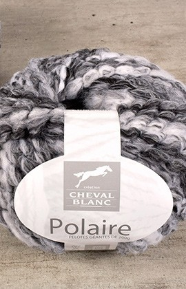 Cheval blanc Polaire